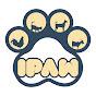I Paw
