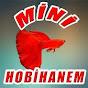 Mini Hobihanem