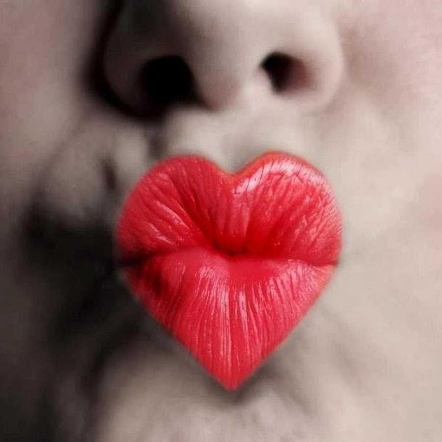кованых поцелуйчик фото и картинки стоп