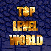 TopLevel World