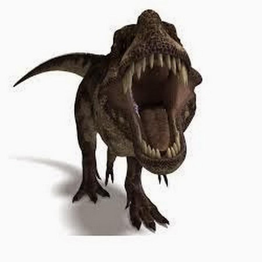 Www.Dino Tube