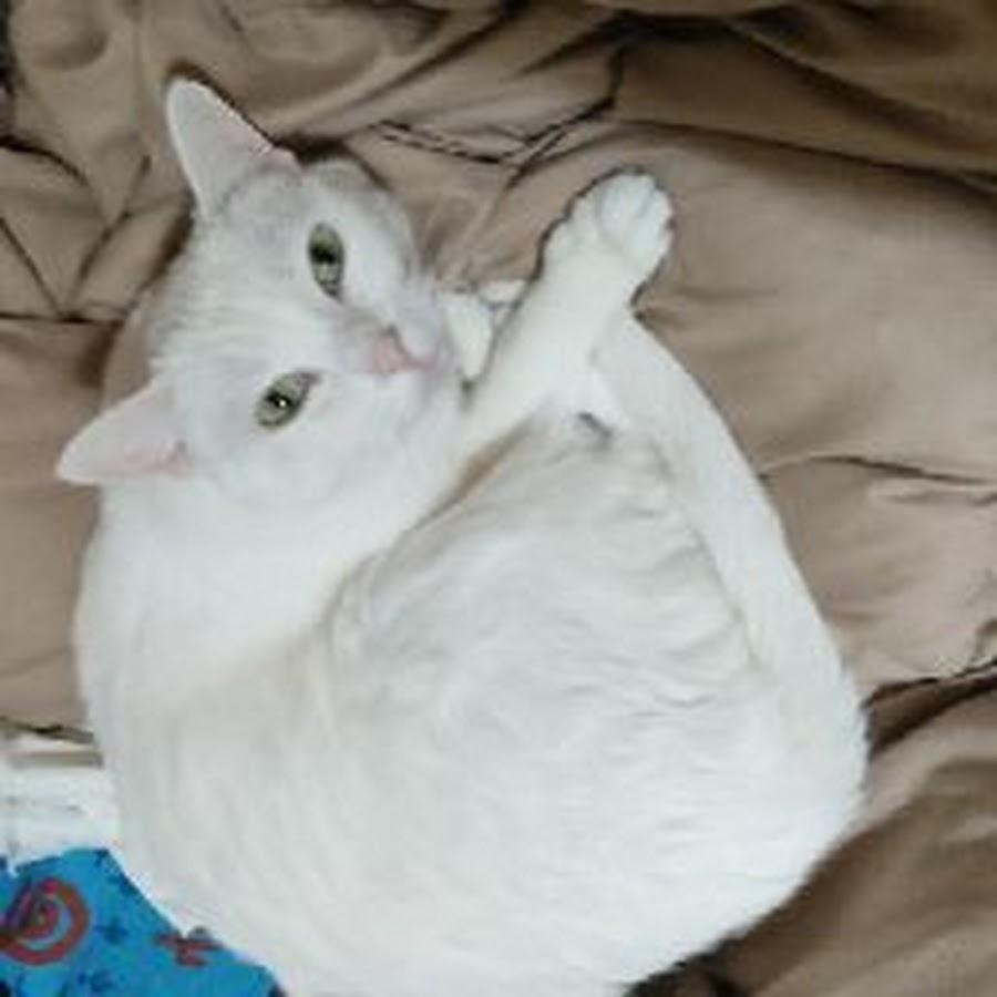 Картинки ангел в аду