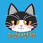 고양이산책 CatOutdoor