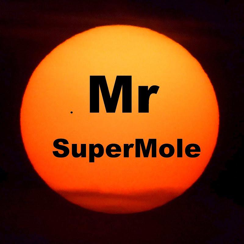 Mr SuperMole