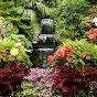 Garden of Life - Youtube