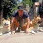 Catalin Cornea dog training