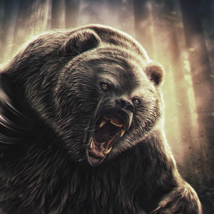 Картинки злых медведей на аватарку