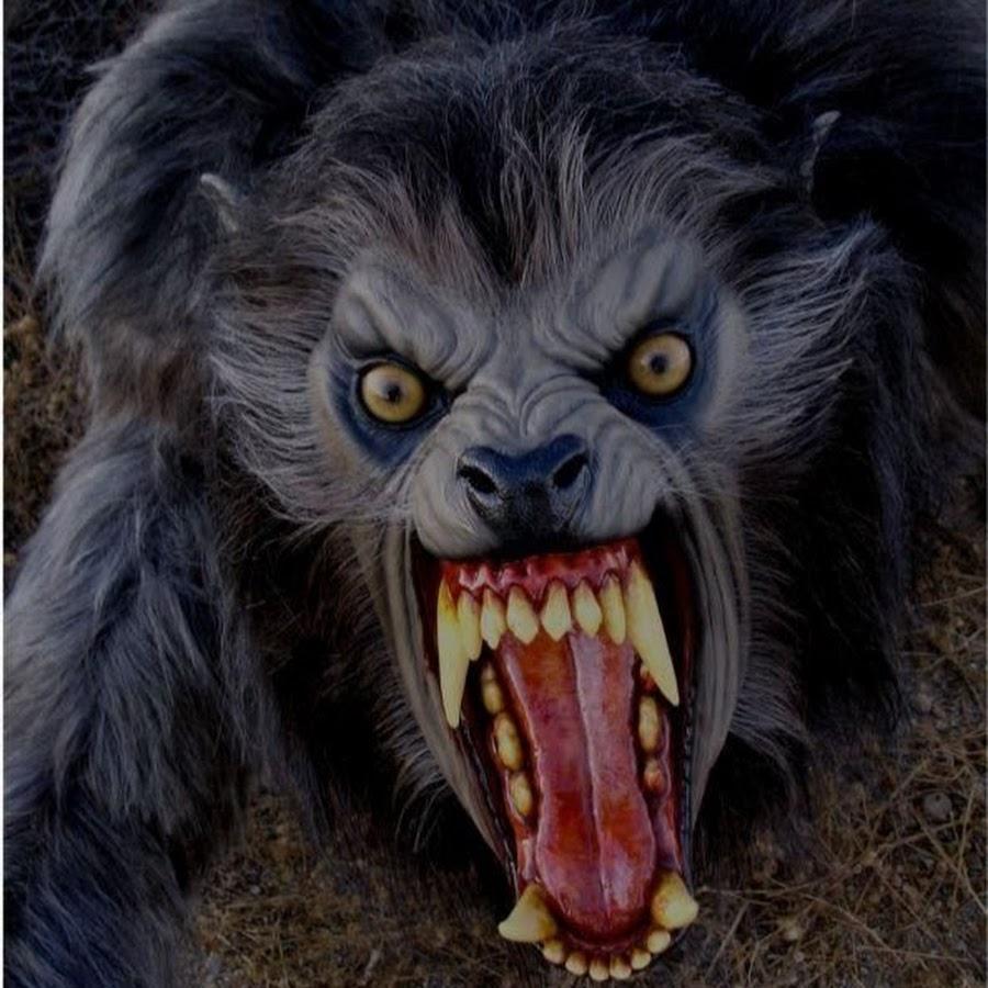картинка оскала черной пантеры дело добровольное