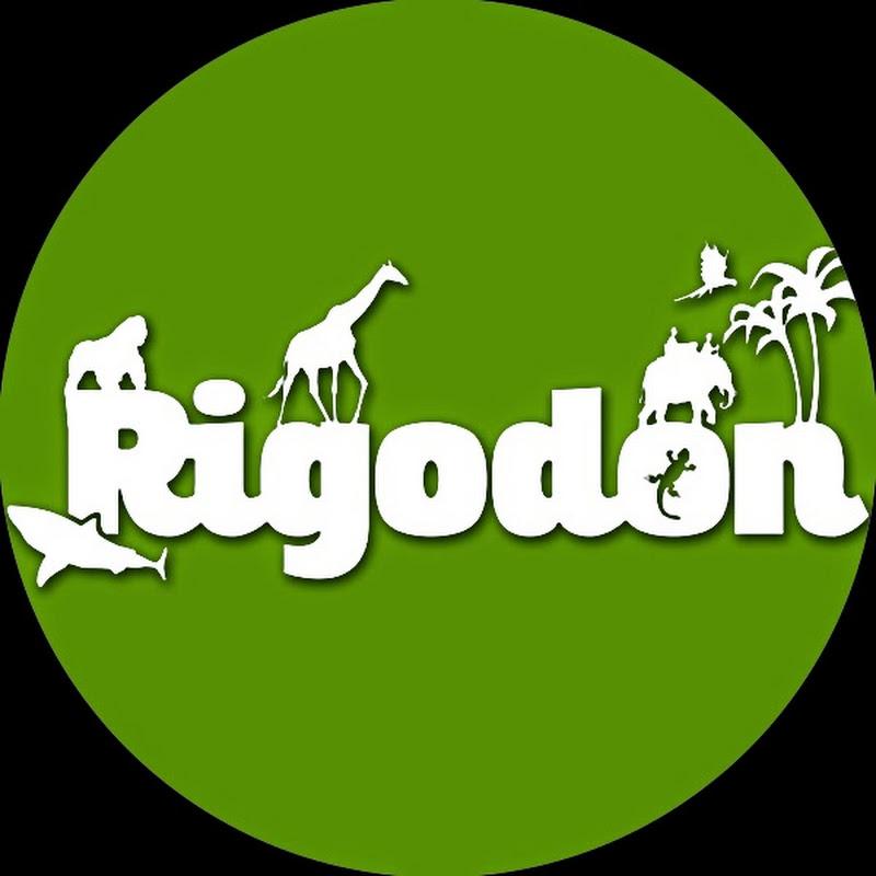 Rigodon Tour