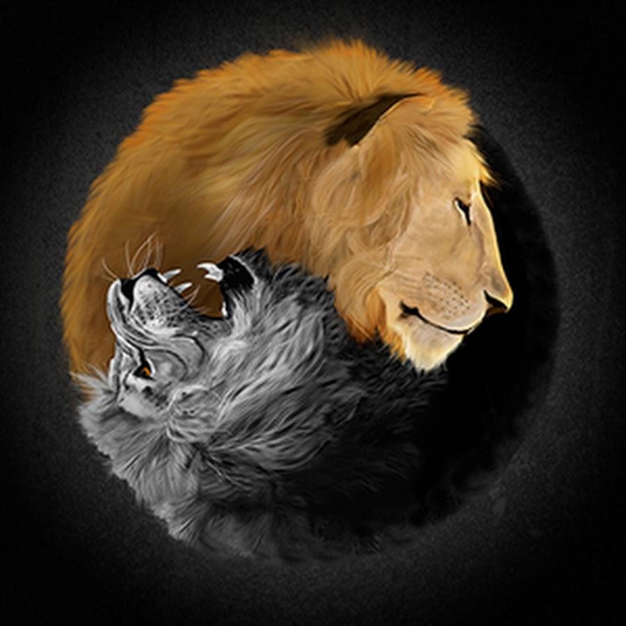 Лев и волк картинки