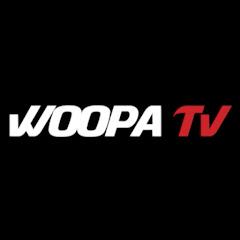 유튜버 우파푸른하늘Woopa TV의 유튜브 채널