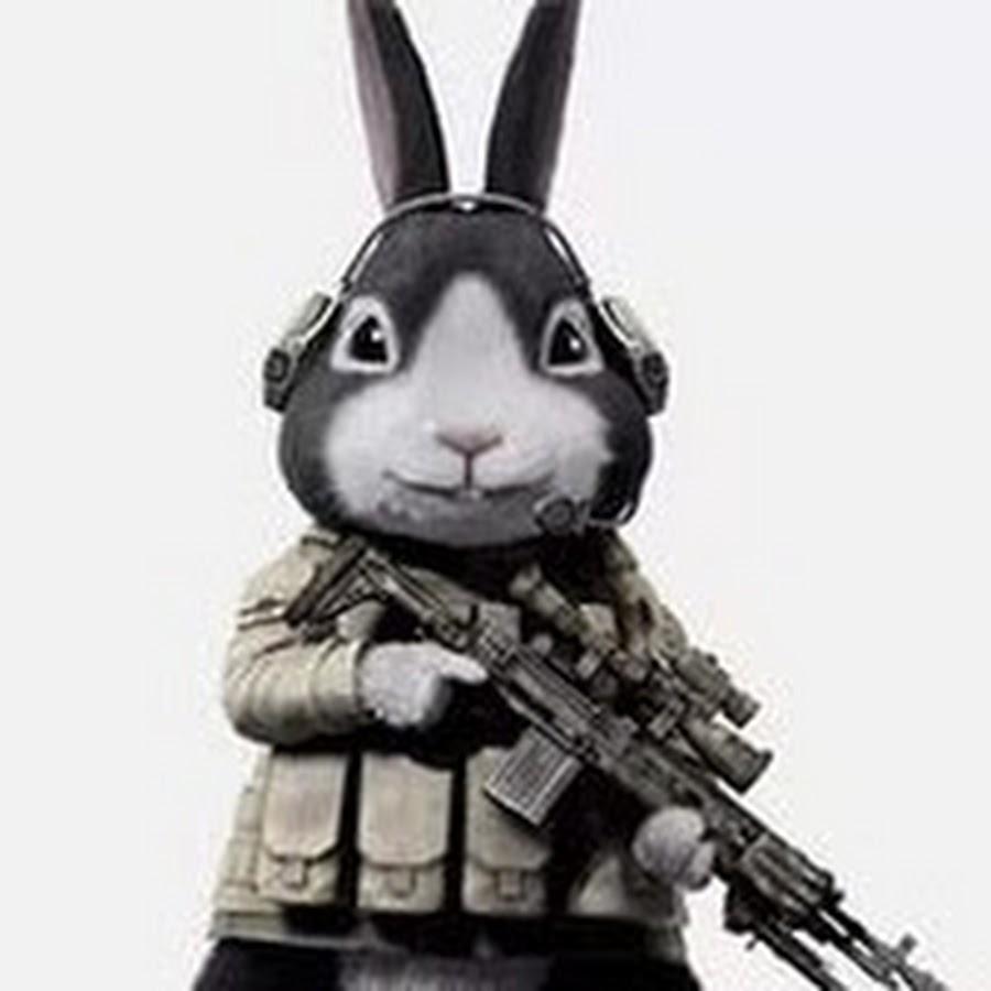 как картинки с боевыми зайцами него якобы было