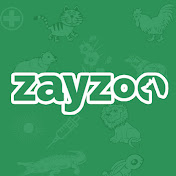 Zayzoo