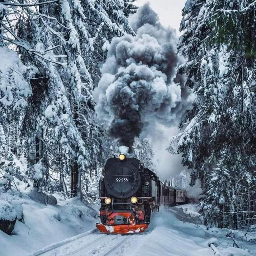 фото кнопка жми ниша красноярске