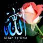 قرآن کریم آرام بخش دل ها