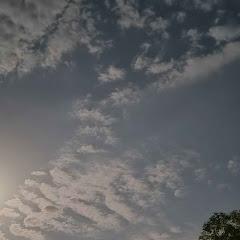 T.R.S Gamer