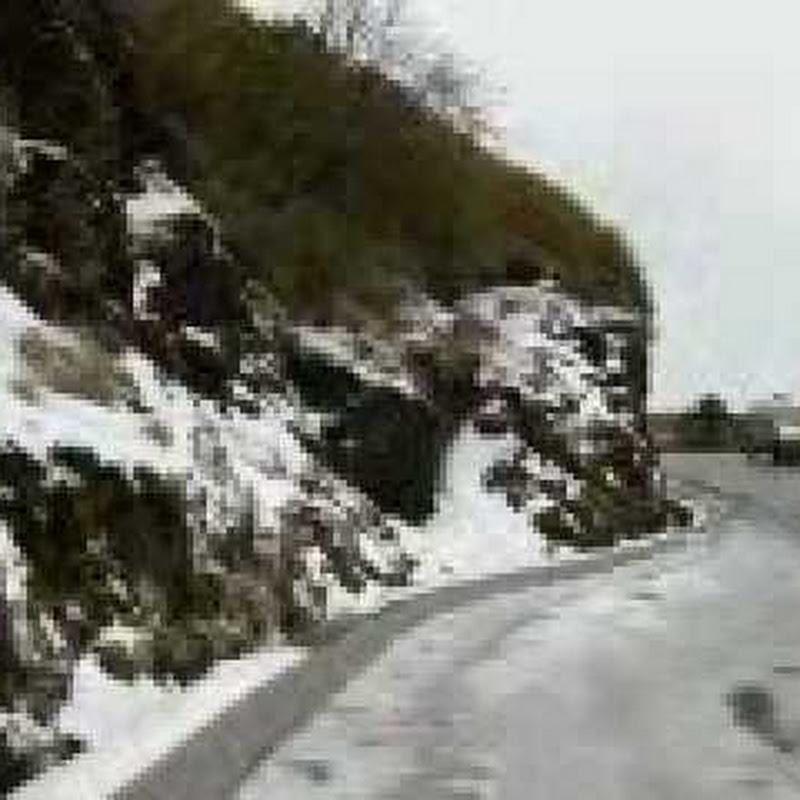 jungpan2008