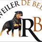 Rottweiler de Bedia David jimenez navas