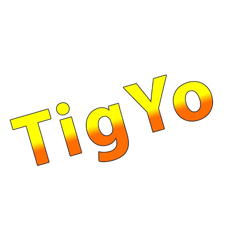 TigYo Gamer