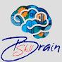 Brain Skill (brain-skill)