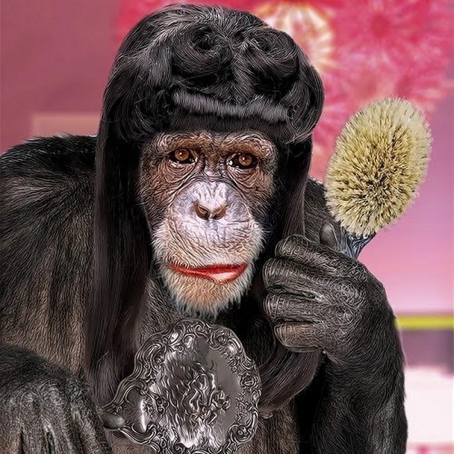 картинка с обезьяной накрасилась оптические явления