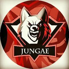 Mr Jungae