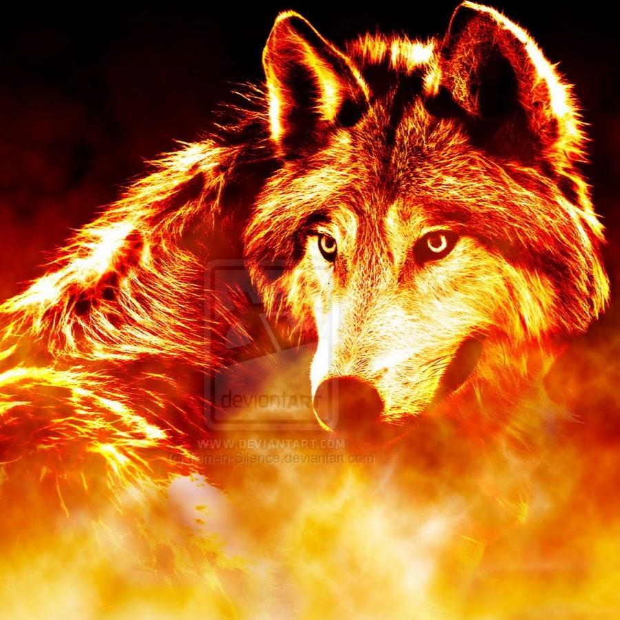 найти картинку волк в огне заказ