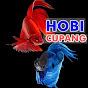 Hobi Cupang