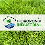 Hidroponia Industrial