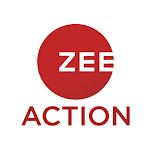 Zee Action Channel Net Worth