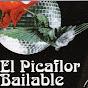 El Picaflor Bailable
