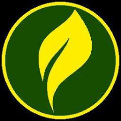 Media Seni