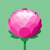 Bahrain Defence Force