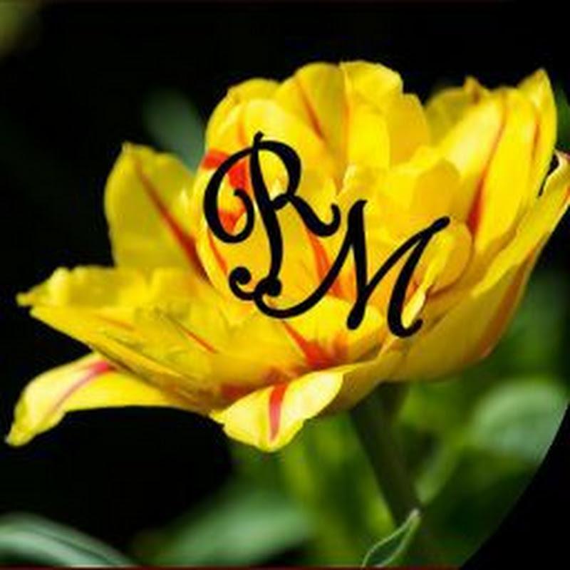 Rose Media (rose-media)