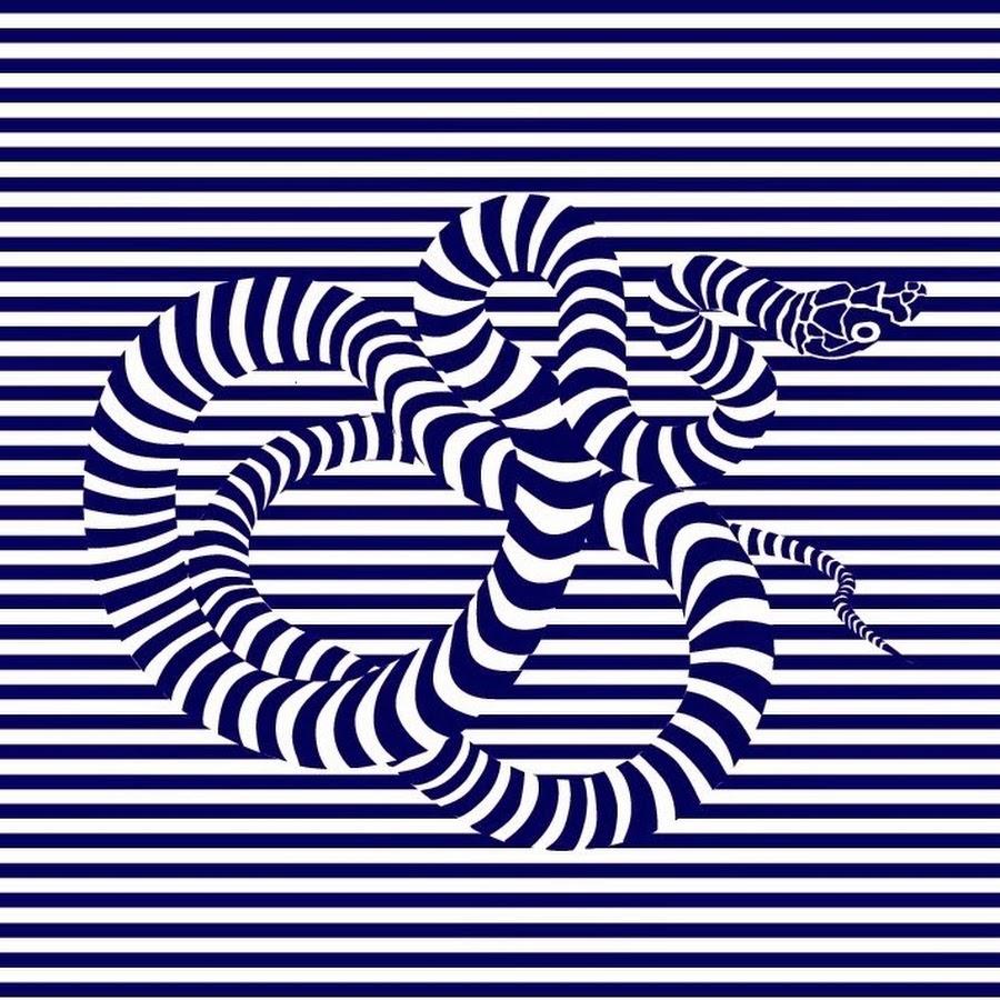 картинка иллюзия змеи магомедовы