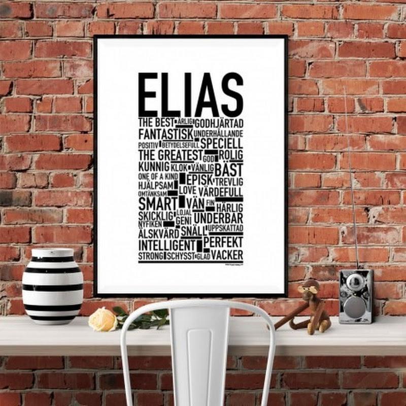 Elias Hanna