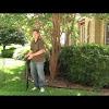 Clean Air Gardening