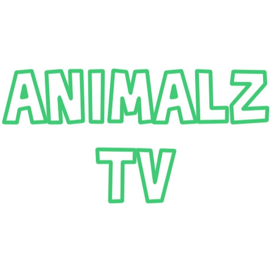 Animalz TV