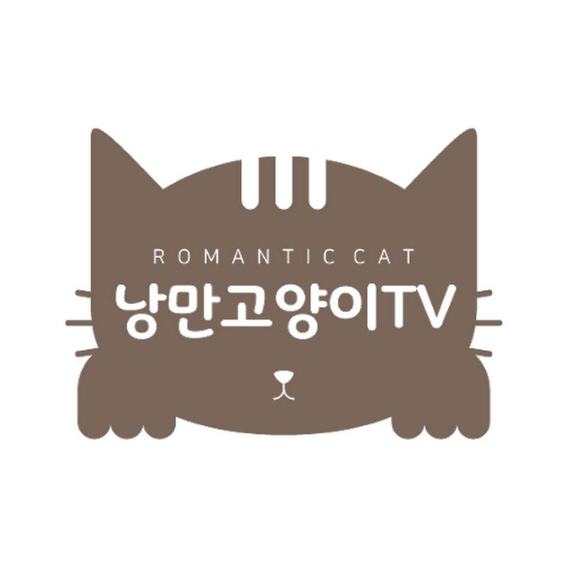 Romantic cat 낭만고양이tv