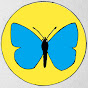 Hyndburn Butterfly Project - Youtube