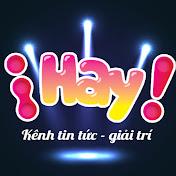 iHay TV