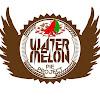 WaterMelon Pie Project