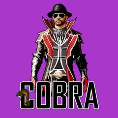 Cobra Gaming