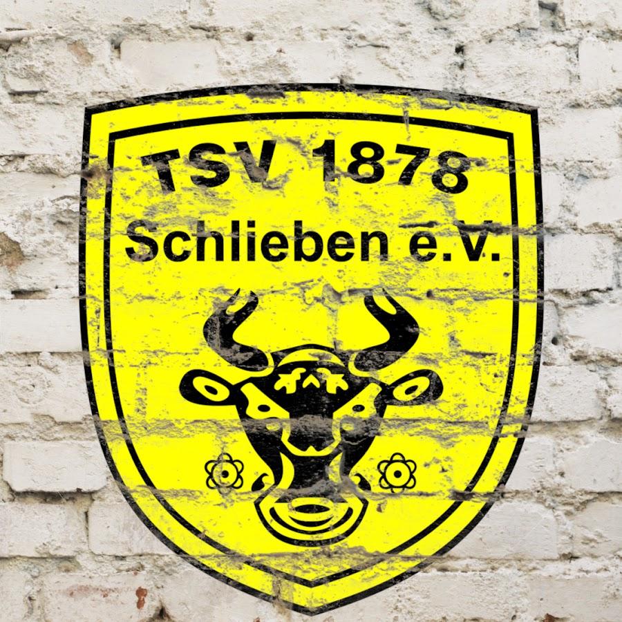 Tsv Schlieben