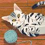 EditWarmTV
