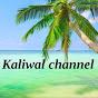 Kaliwal Channel