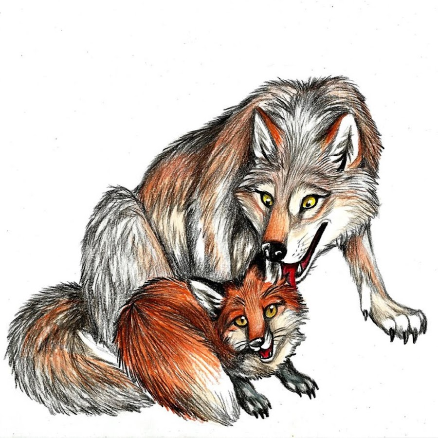 делает волк с лисой прикольные картинки сбрасывают
