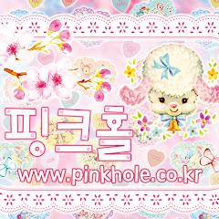 유튜버 핑크홀 Pinkhole의 유튜브 채널