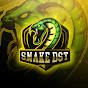 Snake-DST