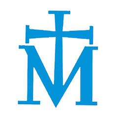 MSM-MMP